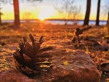 Vårsolnedgång på bankerna av den Kama floden arkivbild