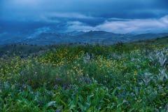 Vårsoluppgång i kullarna fotografering för bildbyråer