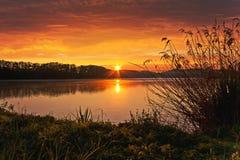 Vårsoluppgång på dammet royaltyfri bild