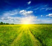 Vårsommar - lantlig väg i grönt fältlandskap arkivbild