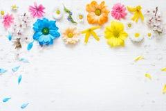 Vårsommarblommor på träretro plankor gör sammandrag blom- bakgrund royaltyfri fotografi