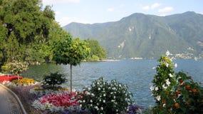 Vårtid på Lugano sjön Ciani parkerar Lugano fotografering för bildbyråer