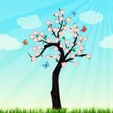 Vårträd i blomning Arkivbild