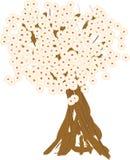 Vårträd i blomningen Arkivbilder