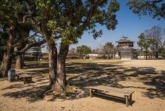 Vårträd i Okayama parkerar Arkivfoto