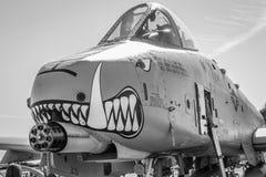 Vårtsvin för flygvapenflygplan A-10 Royaltyfri Fotografi