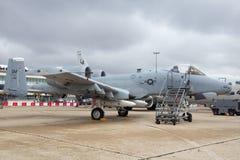 Vårtsvin för USA-flygvapen A-10 Royaltyfri Fotografi