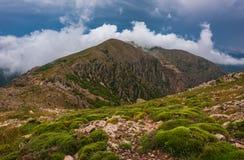 Vårvetation i bergen med moln royaltyfria bilder