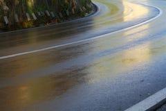 våt asfalt Royaltyfri Foto