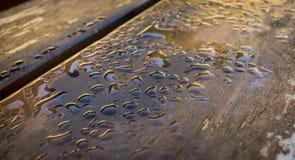 våt bänk Fotografering för Bildbyråer