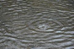 våt dag Arkivbilder