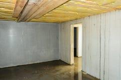 Våt defekt builded källare Royaltyfria Bilder