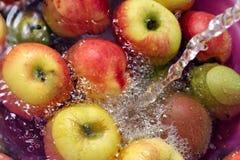 våt frukt Royaltyfri Fotografi