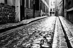 Våt gata efter regnet Arkivbilder