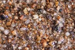 Våt havssand eller mycket små kiselstenar, makrosikt arkivbilder