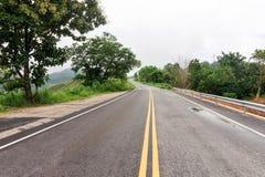 Våt huvudvägvägkurva bland träd med regnmolnet Fotografering för Bildbyråer