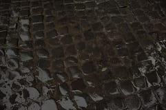 Våt kullerstengata på natten royaltyfri bild
