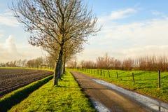 Våt landsväg i ett lantligt landskap Fotografering för Bildbyråer