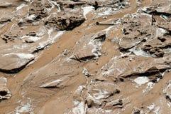 Våt mud Fotografering för Bildbyråer