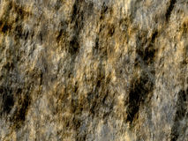 våt rock Arkivbilder
