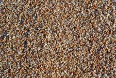 våt sand Royaltyfria Foton