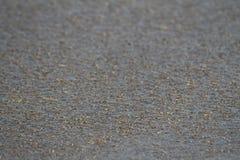 våt sand Royaltyfri Foto