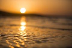 Våt sand stranden på solnedgången royaltyfri foto