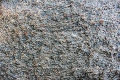 våt sten Royaltyfri Fotografi