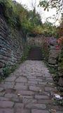Våt stenbana i den TysklandstadsHeidelberg trädgården vid höst Royaltyfria Foton