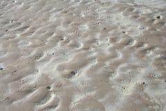 våt strandsand Arkivfoton