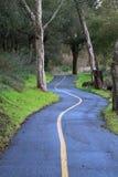 våt trail Arkivbild