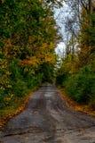 Våt väg i nedgången Fotografering för Bildbyråer