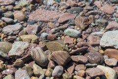 våta färgrika stenar Arkivbild
