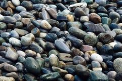 Våta färgrika stenar Härlig bild för naturlig bakgrund fotografering för bildbyråer