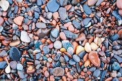 Våta kiselstenar på en strand Arkivbild