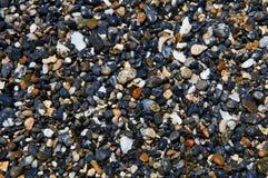 Våta mångfärgade kiselstenar på kusten Royaltyfri Fotografi