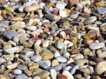 våta pebbles royaltyfri foto