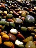 våta pebbles Fotografering för Bildbyråer