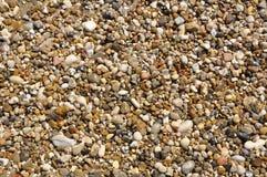 våta pebbles Arkivbild