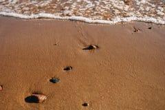 Våta små stenar på brun modell för havssandbakgrund med tomt kopieringsutrymme arkivfoto
