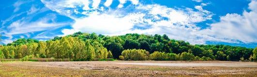 våtmark royaltyfri foto