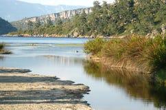 våtmark arkivfoto