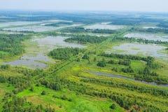 våtmark för övre sikt Arkivfoto