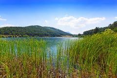 Våtmark i Grekland arkivbild