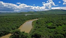 våtmarker Arkivfoton