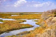 Våtmarker i Alviso träsk, södra San Francisco Bay, San Jose, Kalifornien fotografering för bildbyråer