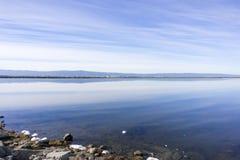 Våtmarker i Alviso träsk, södra San Francisco Bay, San Jose, Kalifornien royaltyfri bild