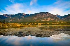 Våtmarker nära Invermere, British Columbia, Kanada royaltyfri foto