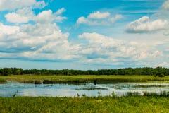 Våtmarker och himmel arkivbilder