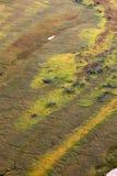 Våtmarkfloodplain i hösten, bästa sikt Arkivbild